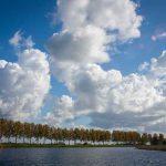 Rondvaart in de IJsseldelta