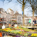 Market Holland Flowers Kampen