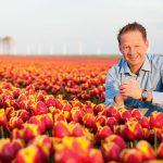 Tulip field Holland Kampen